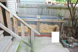 Raising Bees In Backyard by Pets With Benefits U201d Raising Chickens Pigeons And Bees In Urban