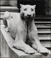 lioness statue museum of the city of new york lioness statue outside of the