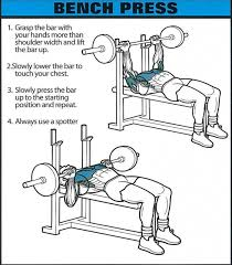 How Much Can Triple H Bench Press Bench Press Healthy Fitness Chest Training Exercises Tricep