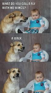 Dog Jokes Meme - dad joke dog know your meme