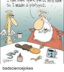 Platypus Meme - 25 best memes about platypus platypus memes