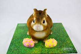 rabbit cake easter cakes scrumptons