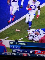 Dildo Meme - a fan threw a dildo into the field during patriots game rebrn com