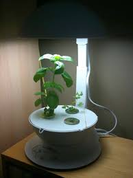 indoor garden hydroponic grow systems led grow lights the