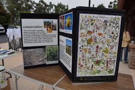 list of california native plants public outreach u2014 cnps san diego