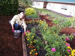 Ideas For School Gardens Pleasant Mercer Island School Gardening Curriculum And Pretty