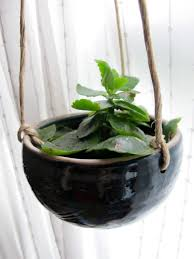 Pot Hangers For Plants 39 Stunning Decor With Ceramic Bowl Hanging