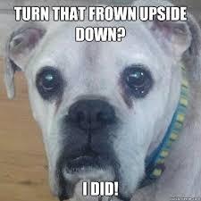 Frowning Dog Meme - new frowning dog meme turn that frown upside down meme memes