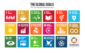how can the development goals be achieved world economic forum