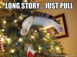 Funny Christmas Meme - funny christmas memes 17