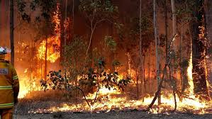 bureau de change cherbourg queensland weather bushfires cool change on the way cherbourg