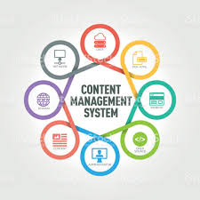 content management system infographic with 8 steps parts options