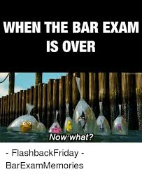 Now What Meme - when the bar exam is over now what flashbackfriday