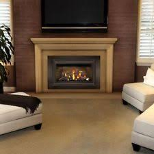 Natural Gas Fireplaces Direct Vent by Direct Vent Gas Fireplace Ebay