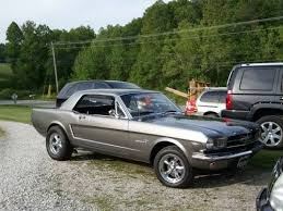 mustang style names 1630 best mustangs images on ford mustangs car and