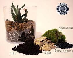 geodesium terrariums u0026 terrarium kits by geodesium on etsy
