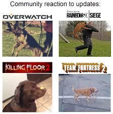 Meme Gamer - gamer dog meme by menaria on deviantart