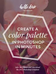 Beautiful Color Palettes by Quickly Develop A Color Palette In Photoshop Hello Brio Studio