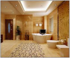 Home Design And Lighting by Down Ceiling Designs For Bathroom Www Energywarden Net