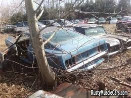 mustang restoration project for sale junkyard 1969 fastback mustang car photos and