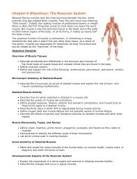gross anatomy of the muscular system images learn human anatomy