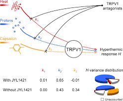 contributions of different modes of trpv1 activation to trpv1