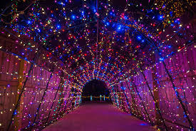 enchanted forest of light tickets houston holidays a ton of family fun citypass scrapbook