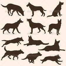 belgian shepherd tattoo 694 best belgian malinois images on pinterest military dogs