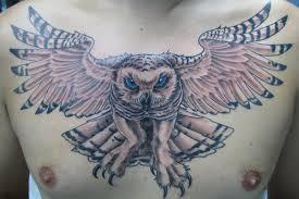 snowy owl by joshdixart on deviantart