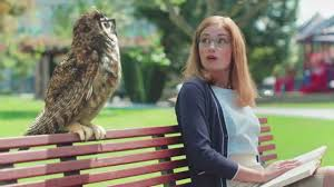 americas best owl commercial actress owls saying who isn t funny david avrin