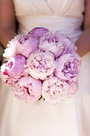 wedding flowers peonies peony bouquets peonies wedding bridal bouquets adelaide brides