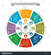 template organizational chart organizational chart structure template count stock vector
