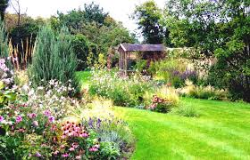 perennial herb garden layout low maintenance landscaping ideas for the midwest habitat hero