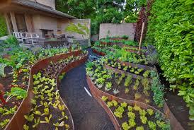 exterior design edible garden with raised planter boxes and