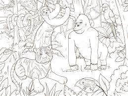 jungle animals cartoon coloring book vector illustration royalty