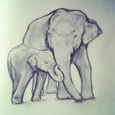 momma and baby elephant sketch my works of art pinterest