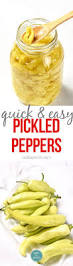 best 25 preserve ideas on pinterest canning recipes making