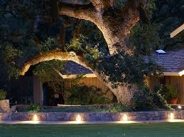 Outdoor Up Lighting For Trees 95 Best Landscape Lighting Images On Pinterest Exterior Lighting