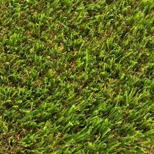 Fake Grass Outdoor Rug Shop Cut To Length Artificial Grass At Lowes Com