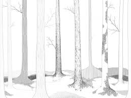 in the forest lives r50104 wall murals wallpaper rebel r50104 wall murals wallpaper rebel walls australia