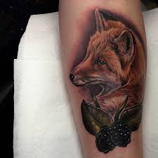 blackberry fox best ideas gallery