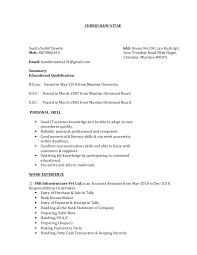 Tally Resume Sample by Sunita Resume 2