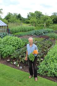 forums archive no dig organic gardening