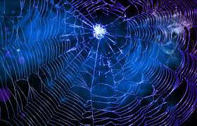 pin by lora falk on very blue pinterest spider webs spider