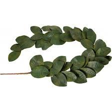 5 magnolia leaf garland green 40 leaves fg517809
