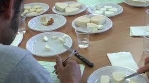 chambre agriculture aude dégustation de fromages à la chambre d agriculture de l aude pour