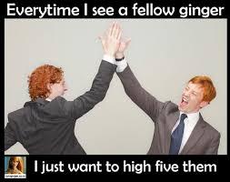 Ginger Meme - ginger memes