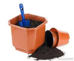Soil Mix For Container Gardening - how do i grow azalea in pots with pictures