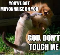Mayonnaise Meme - you ve got mayonnaise on you god don t touch me disbelieving