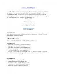 Career Objective For Resume For Experienced 100 Objective In Resume For Experienced Software Engineer